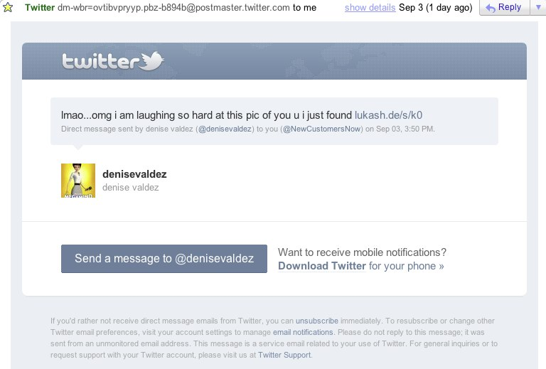 Twitter Phished Email Example