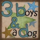 Product Review Blogger 3 boys and a dog