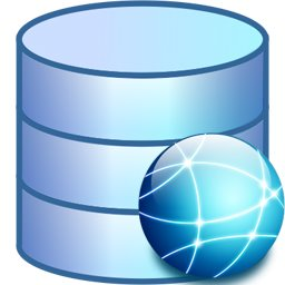 web database icon