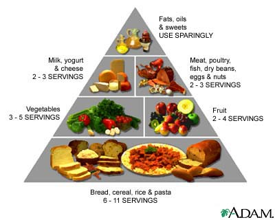 Food Pyramid: How the USDA Conspired with Food ...